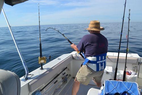 Offshore trips maine ocean adventures for Maine deep sea fishing charters