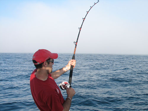 Catching lots of fish while deep sea fishing in maine for Maine deep sea fishing charters
