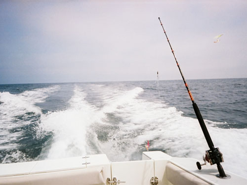 Maine offshore fishing maine ocean adventures for Deep sea fishing in maine